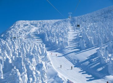 Commodities in Japan Ski Resorts Are The Cheapest in The World