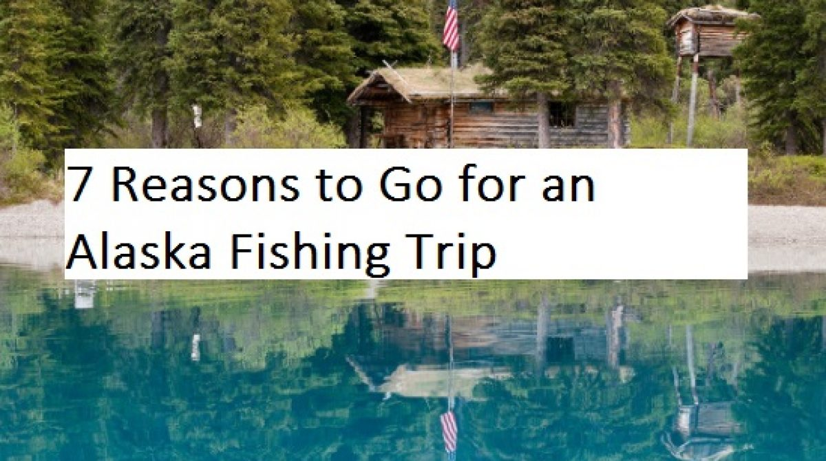 7 Reasons to Go for an Alaska Fishing Trip