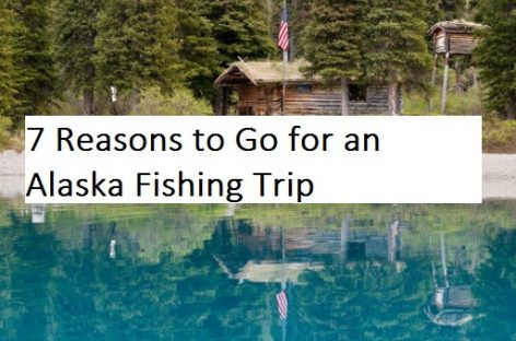 7 Reasons to Go for an Alaska Fishing Trip
