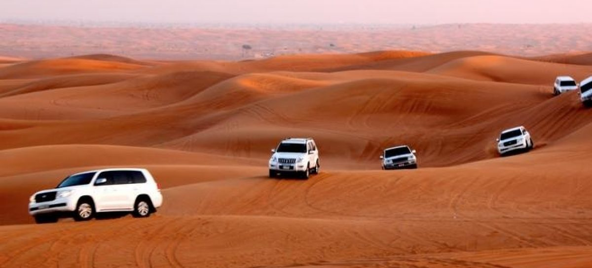 What are the reasons behind people visiting desert safari in a huge number