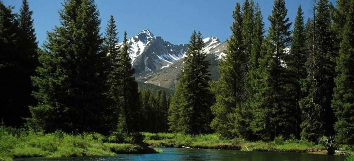 To Explore Colorado Take Daily Tours in The Rocky Mountains